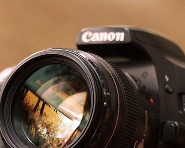 Canon EOS On The Yellow Leaves