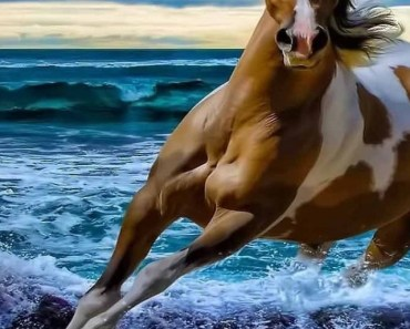 Horses Galloping In the Sea