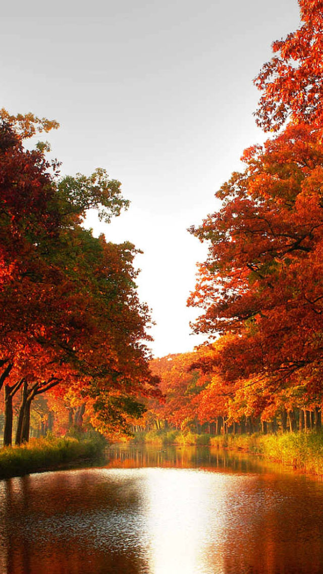 3d Free Fall Nature Wallpaper Autumn River Iphone 6 6 Plus And Iphone 5 4 Wallpapers