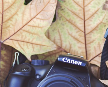 Canon Camera Autumn