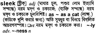 Bangla Meaning of Sleek
