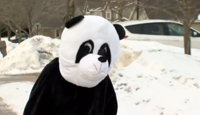 Neighbors Call 911 On Guy Pulling Prank In Panda Suit
