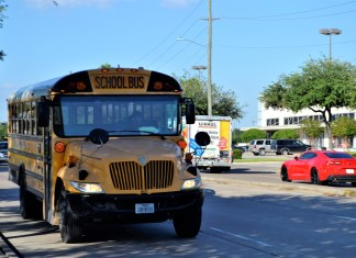 Busybody Cheers As Police Stop Cars For Not Stopping For School Bus
