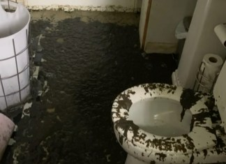 Poop Tornado Flies out of Toilets Across Neighborhood