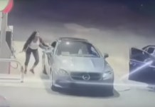 Woman Jumps Through Her Own Car Window To Stop Thief