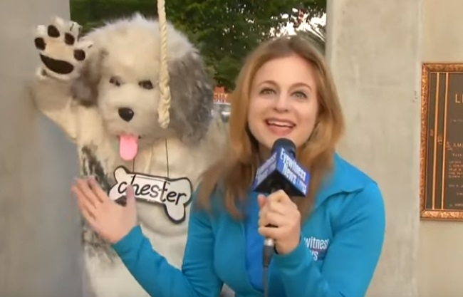 Here Are The Best News Bloopers From May 2019!