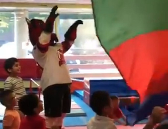 New Jersey Devils Mascot Shatters Expectations (And Glass) At Kid's Birthday Party