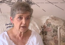 79-Year-Old Woman Sentenced To Jail For Feeding Stray Cats