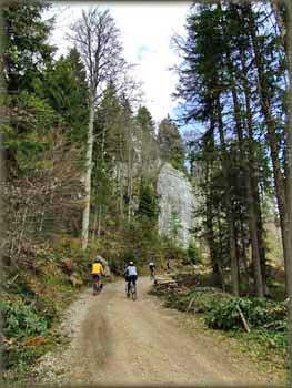 Kroz guste šume između Karaklija i Predovog Krsta