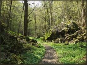 Single trail od Rimskog Bunara ka Rajkovoj pećini