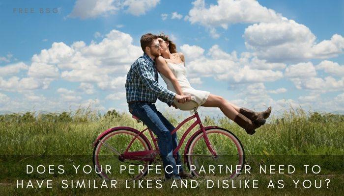 Does your Perfect Partner Need to Have Similar Likes and Dislike as You?