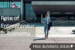role of entrepreneur in economy