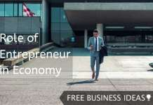 role of entrepreneur in economy