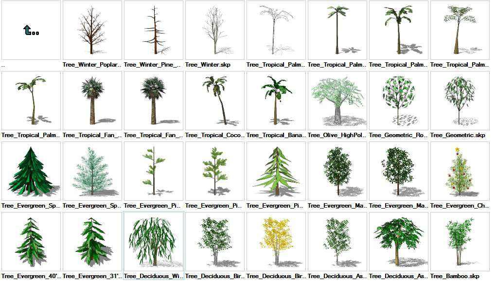 Sketchup Trees 3D models download - Free CAD Download World