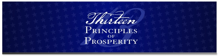 13 Principles Logo White on Blue