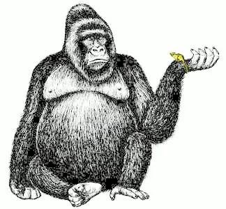 gorilla-w-mouse