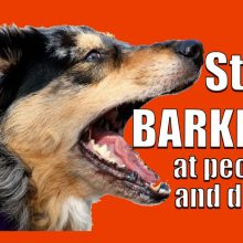 How-to-STOP-your-dog-barking