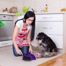 how-to-housebreak-your-dog-in-3-simple-steps