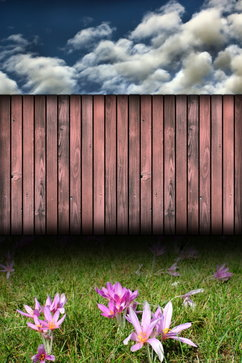 Wood Vinyl Privacy Fence Severn
