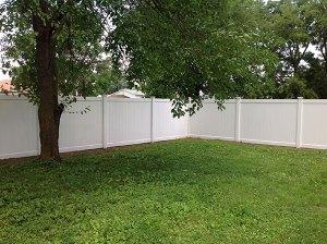 Fence 47