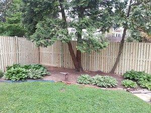 Fence 78
