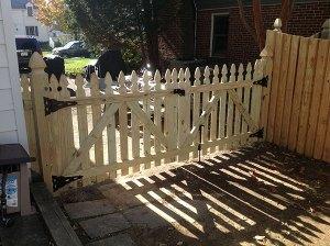 Fence 96