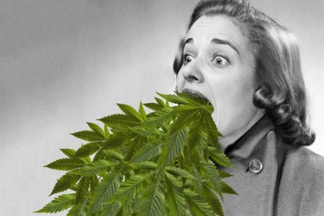 What is Cannabinoid Hyperemesis Syndrome