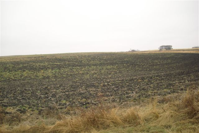 farmland update