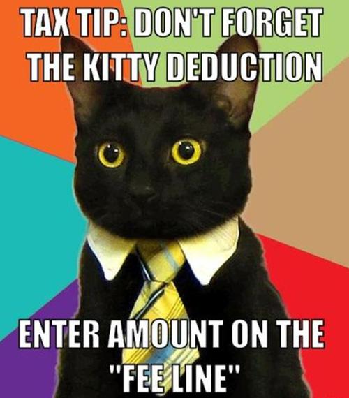 14-02-taxcat, tax deductible interest, passive income