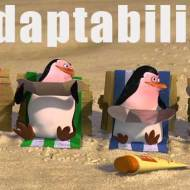 15-06-adaptability-penguins