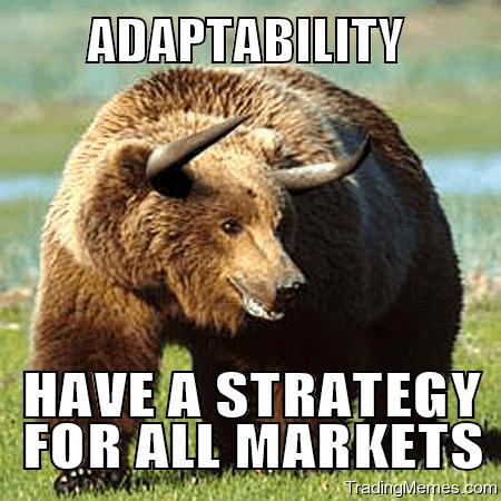 15-06-bear-bull-market-adaptability