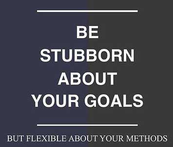 15-06-goals-stubborn-flexible-fact