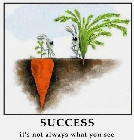 15-11-success-isnt-what-you-always-see
