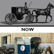 16-01--horse-evolution-we-can-eat-them
