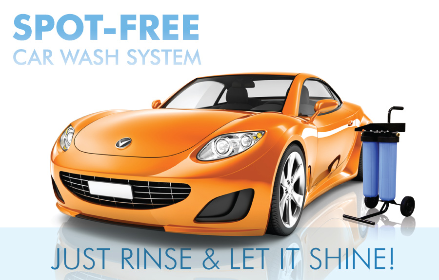 apec spot free car