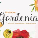 Gardenia Script Font Free