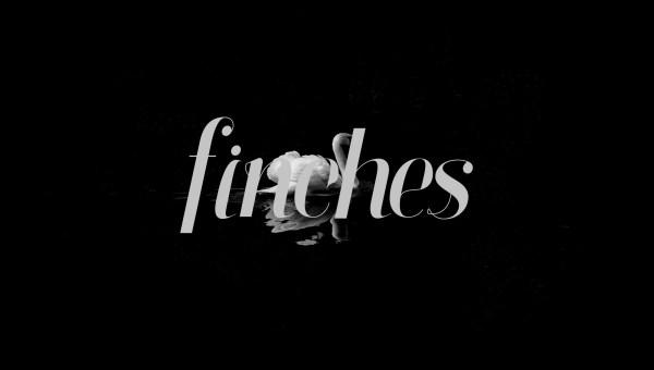 Finches Serif Italic Font