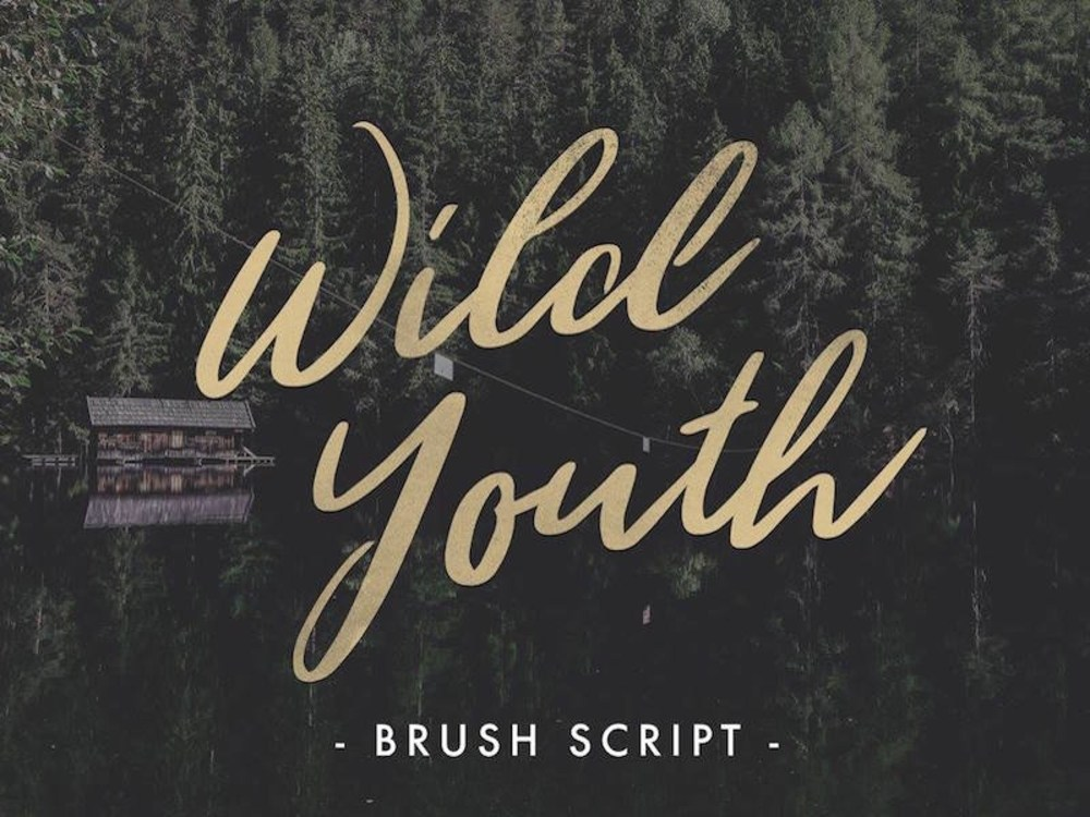 wild_youth_dribbble
