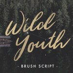 Wild Youth – Free Brush Script