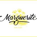 Marguerite Script Font Free