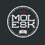 Molesk Free Font