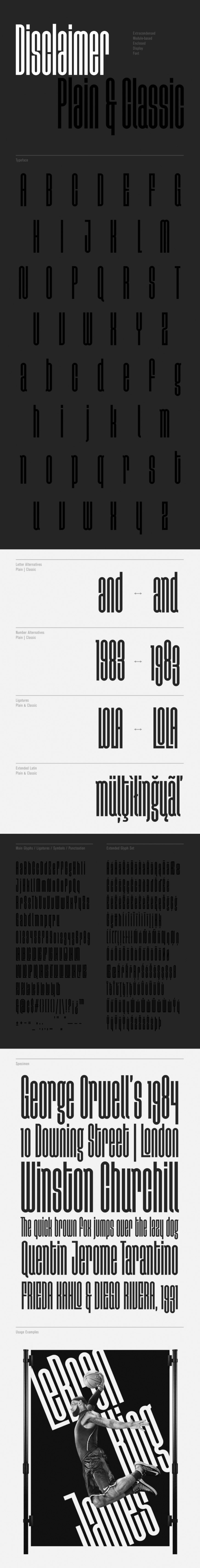 disclaimer typeface