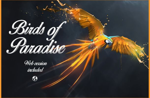 Birds of Paradise Free Calligraphy Font