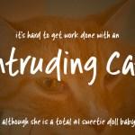 Intruding Cat Free Font