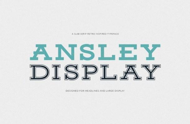 Ansley Free Slab Serif Font Family