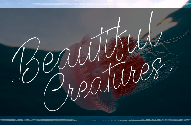 Beautiful Creatures Font Free
