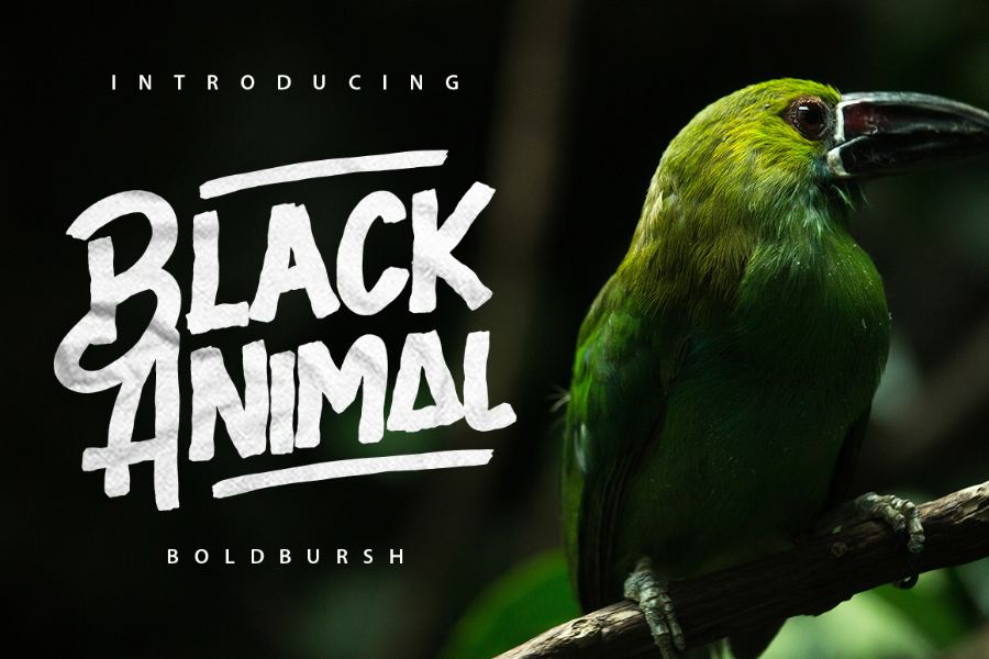 black-animal-font