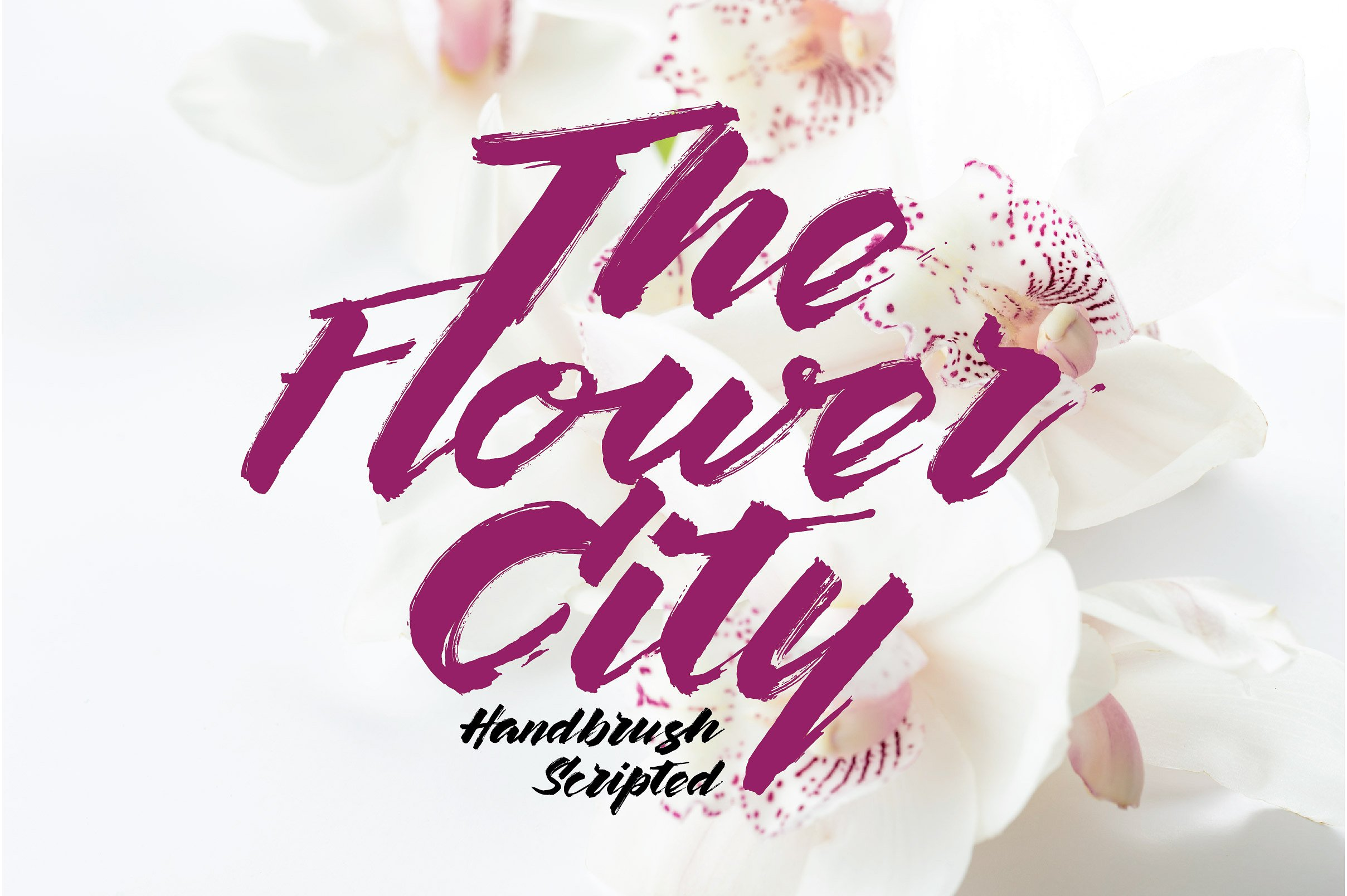 the-flower-city