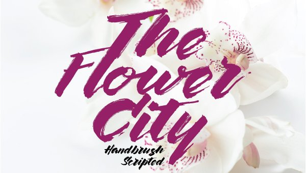 The Flower City Script Font