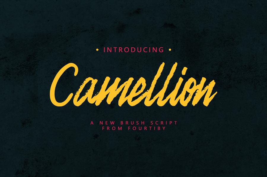 Camellion-Brush-demo_Irfan-Ulya_040917_prev01
